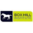 Study in Boxhill University